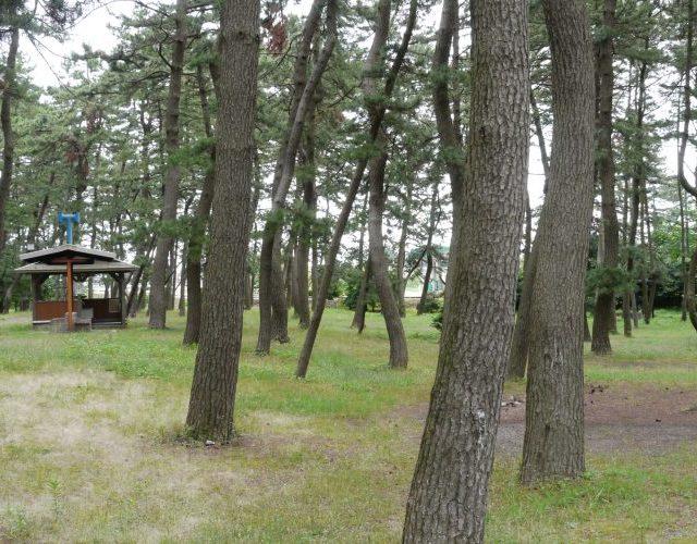 大島キャンプ場